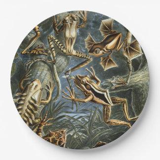 Assiettes En Papier Variété d'Ernst Haeckel de grenouilles exotiques :