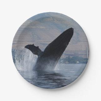 Assiettes En Papier violation de baleine de bosse