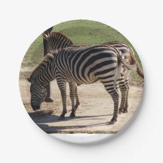 Assiettes En Papier Zèbres au zoo