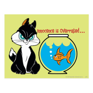 Atermoyez Kitty grincheux Cartes Postales