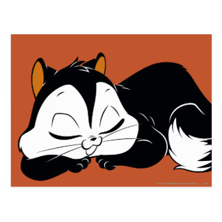 Atermoyez Kitty somnolent Cartes Postales