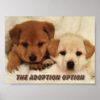 Attendrez-vous pour adopter un animal ? posters