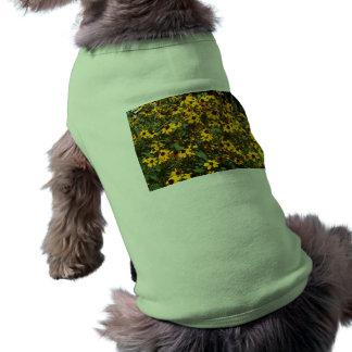 August 2010 010 t-shirt pour chien