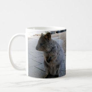 Australien Quokka, tasse de café blanc