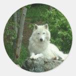 Autocollant arctique de loup