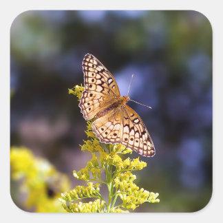 Autocollant carré de papillon