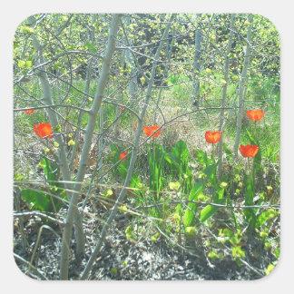 Autocollant carré de tulipes d'arbres rouges