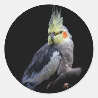 Autocollant de Cockatiel