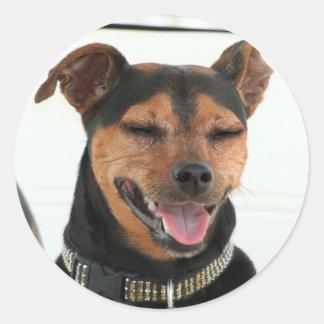 Autocollant de sourire de chien