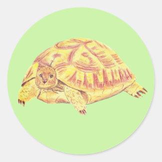 Autocollant de tortue, autocollant de tortue