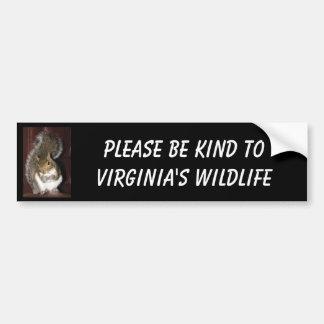 Autocollant De Voiture Adhésif pour pare-chocs d'écureuil, comportant le
