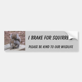 Autocollant De Voiture adhésif pour pare-chocs d'écureuil comportant le