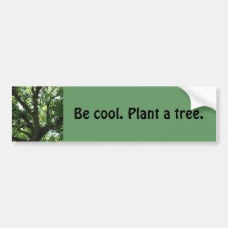 """Autocollant De Voiture Adhésif pour pare-chocs """"plantez arbre"""""""