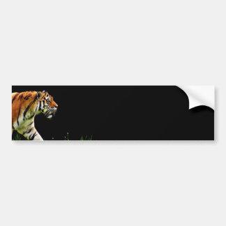 Autocollant De Voiture Approche de tigre - illustration d'animal sauvage