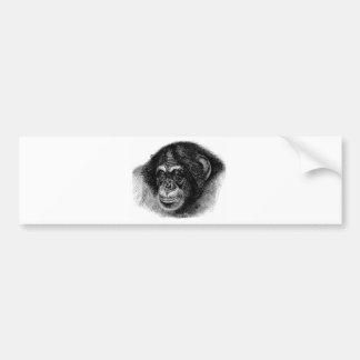 Autocollant De Voiture Art principal de chimpanzé