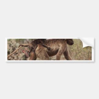 Autocollant De Voiture Babouin femelle de gelada avec un bébé