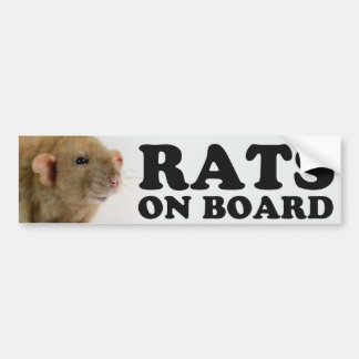 Autocollant De Voiture (Burmese) Rats on board