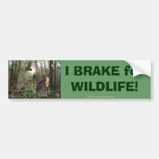Autocollant De Voiture Cadeaux d'animaux de forêt