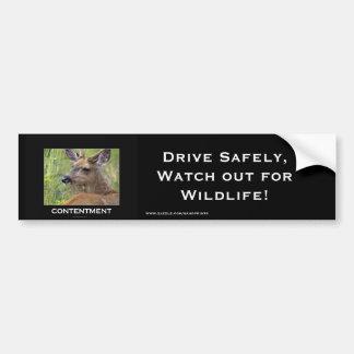 Autocollant De Voiture Cadeaux de motivation de cerfs communs