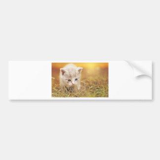 Autocollant De Voiture Charme mignon d'animal de compagnie de chaton de