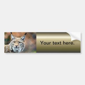 Autocollant De Voiture Chat de prédateur de faune de chat sauvage de Lynx