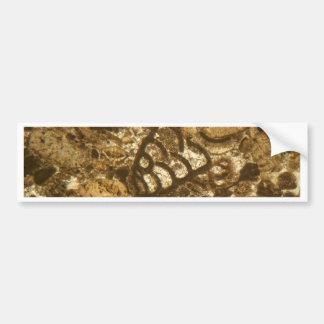 Autocollant De Voiture Chaux miocène sous le microscope