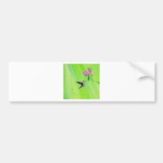 Autocollant De Voiture Colibri et pois doux