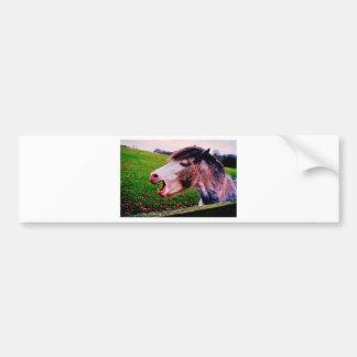 Autocollant De Voiture Conception de cheval d'IMG_0897.JPG de Jane