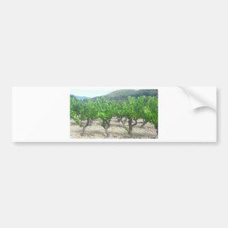 Autocollant De Voiture Conception de vin
