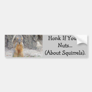 Autocollant De Voiture Cornez si vous êtes Nuts… au sujet des écureuils