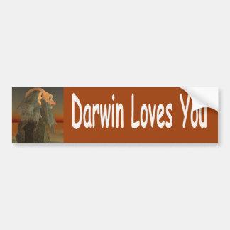Autocollant De Voiture Darwin
