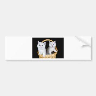 Autocollant De Voiture Deux chatons blancs dans le panier sur