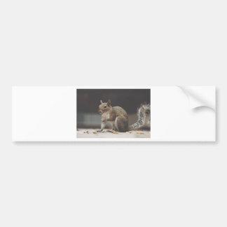 Autocollant De Voiture écureuil