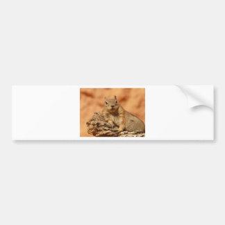 Autocollant De Voiture Écureuil moulu enveloppé d'or