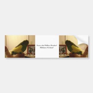 Autocollant De Voiture Équilibres verts et jaunes de perruche en main
