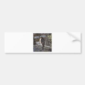 Autocollant De Voiture faucon Large-à ailes