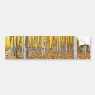 Autocollant De Voiture Ferme d'arbre de peuplier dans Boardman Orégon