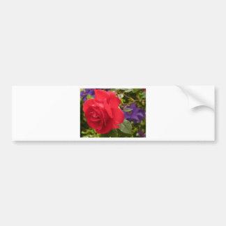 Autocollant De Voiture Fermez-vous vers le haut de la photo du rose rouge
