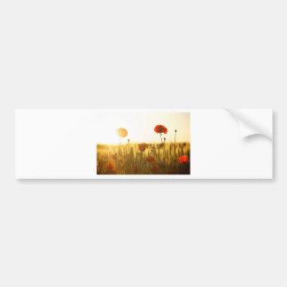 Autocollant De Voiture Fleur rouge près de la fleur blanche pendant la