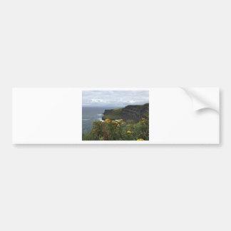 Autocollant De Voiture Fleurs sur les falaises de Moher