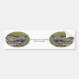 Autocollant De Voiture Geai bleu sur l'Outcropping de granit avec de la