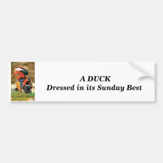 Autocollant De Voiture habillé canard