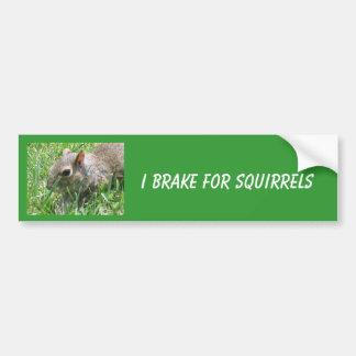 Autocollant De Voiture Je freine pour des écureuils comportant le