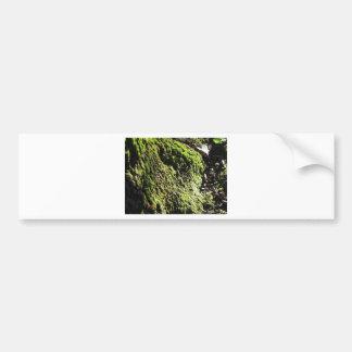 Autocollant De Voiture La mousse verte dans le détail de nature de la