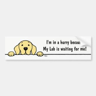 Autocollant De Voiture Labrador jaune vous observant adhésif pour