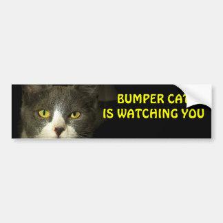 Autocollant De Voiture Le chat de butoir vous observe 3