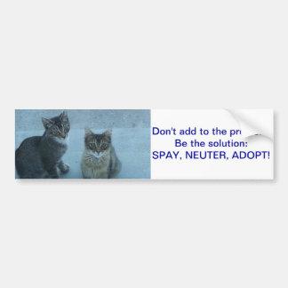 Autocollant De Voiture Le chaton égaré adorable envoient un message