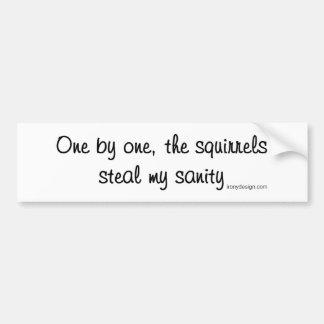Autocollant De Voiture Les écureuils volent ma santé d'esprit