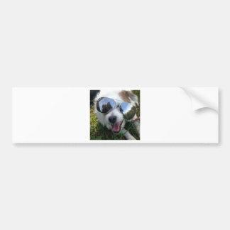 Autocollant De Voiture Lunettes de soleil l'AVENIR LUMINEUX de chien pour