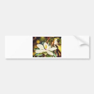 Autocollant De Voiture Magnolia magnifique du Mississippi